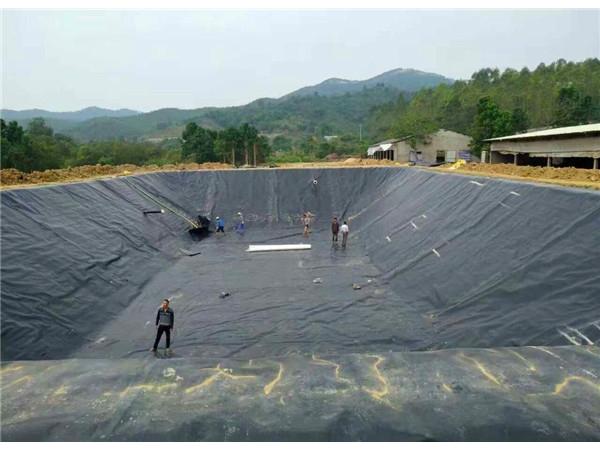 养殖蓄水池