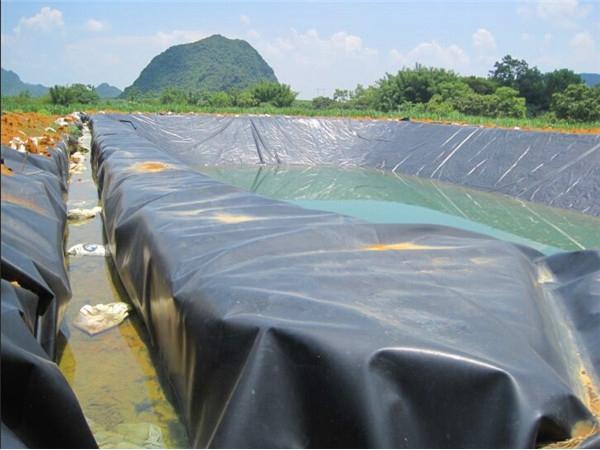 黑膜蓄水池