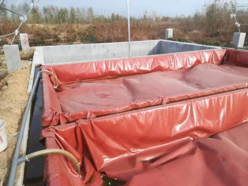 养猪场沼气池